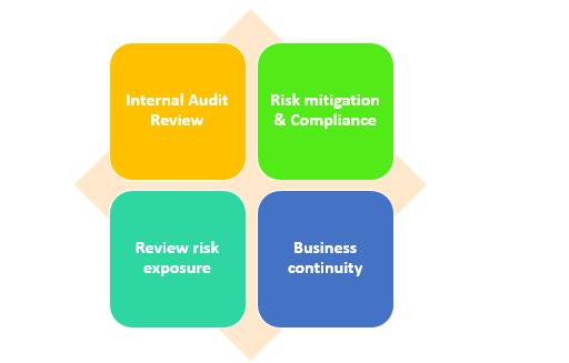 Internal Audit Review & Risk Management